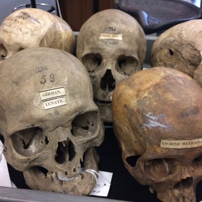 Episode 38: Skulls and Skin (Seeing White, Part 8)